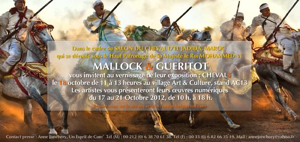 Vernissage de l'EXPO «Chevals» au Maroc !
